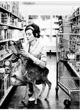 Audrey Hepburn Goes shopping with her deer.